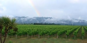 Straw Lodge Marlborough Accommodation Vineyard Rainbow