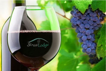 Straw Lodge Marlborough Accommodation wines